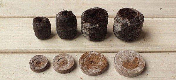 Приобретайте торфяные таблетки, если у вас нет времени заниматься смешиванием земли