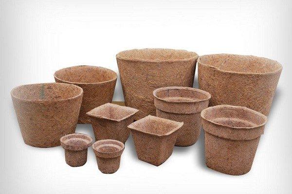 Торфяные горшки или таблетки позволяют пересаживать рассаду, не повреждая корни растений