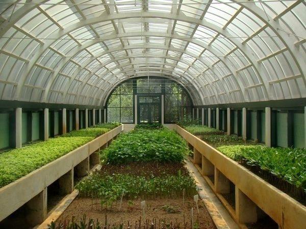 Обустроить промышленную теплицу для успешного взращивания в ней овощей не так-то просто