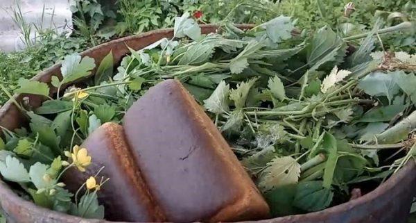 Ингредиенты для «хлебного» удобрения