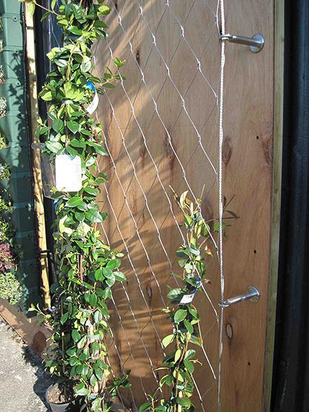 Шалера для подвязки растений