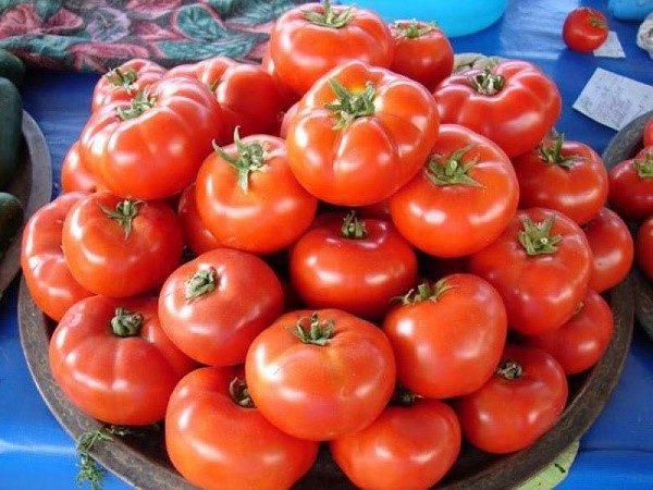 """Сорт """"Джина"""" - яркий представитель раннеспелых сортов, плоды которого достигают солидного веса в 350 граммов"""