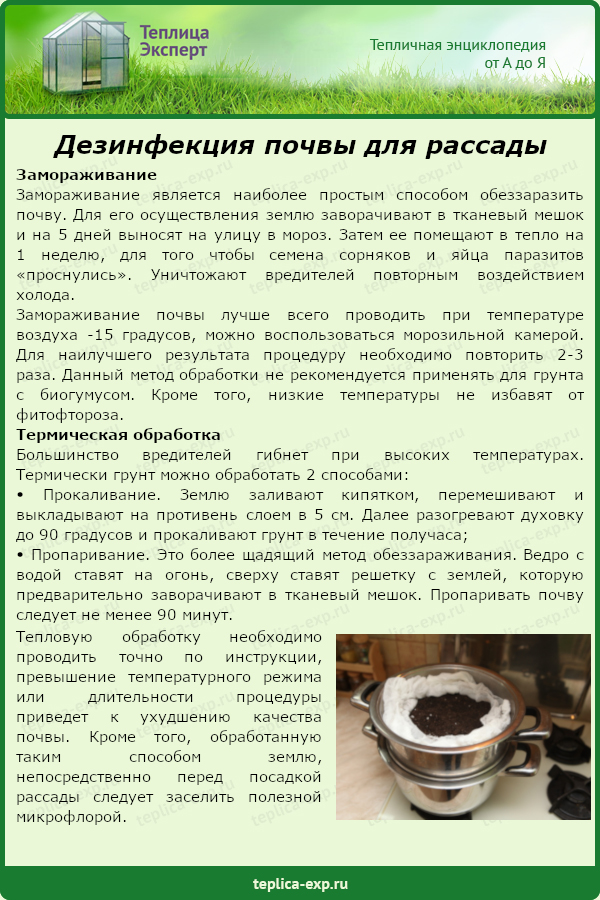 Дезинфекция почвы для рассады