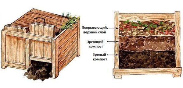Для хорошего урожая следует позаботиться о компосте