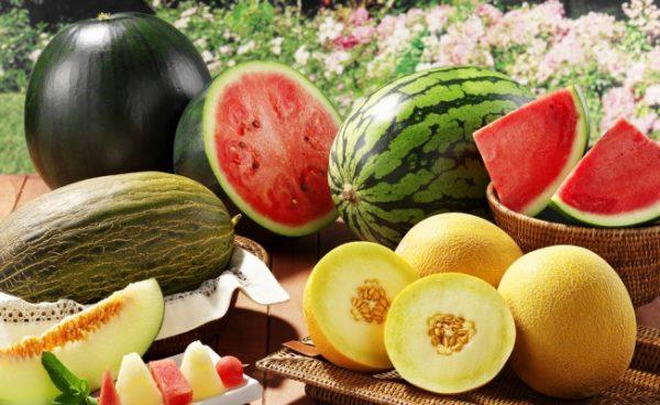 К бахчевым культурам относятся арбузы, дыни и тыквы