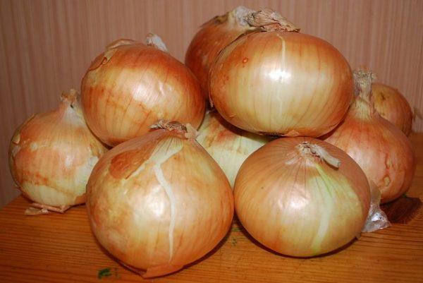 Хранить можно только зрелые луковицы без дефектов
