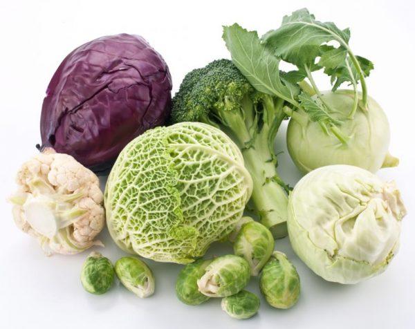 Капуста - самый неприхотливый овощ