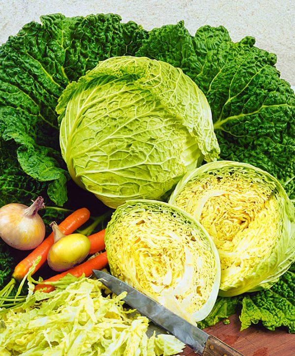 На основе савойской капусты получаются вкусные и полезные витаминные салаты