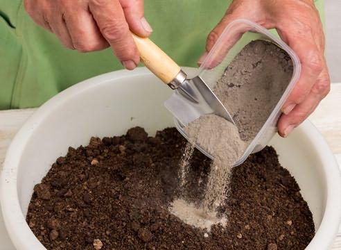 Основной задачей подкормки является упрощение привыкания сеянца к огороду