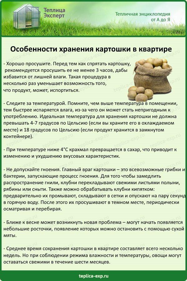 Особенности хранения картошки в квартире