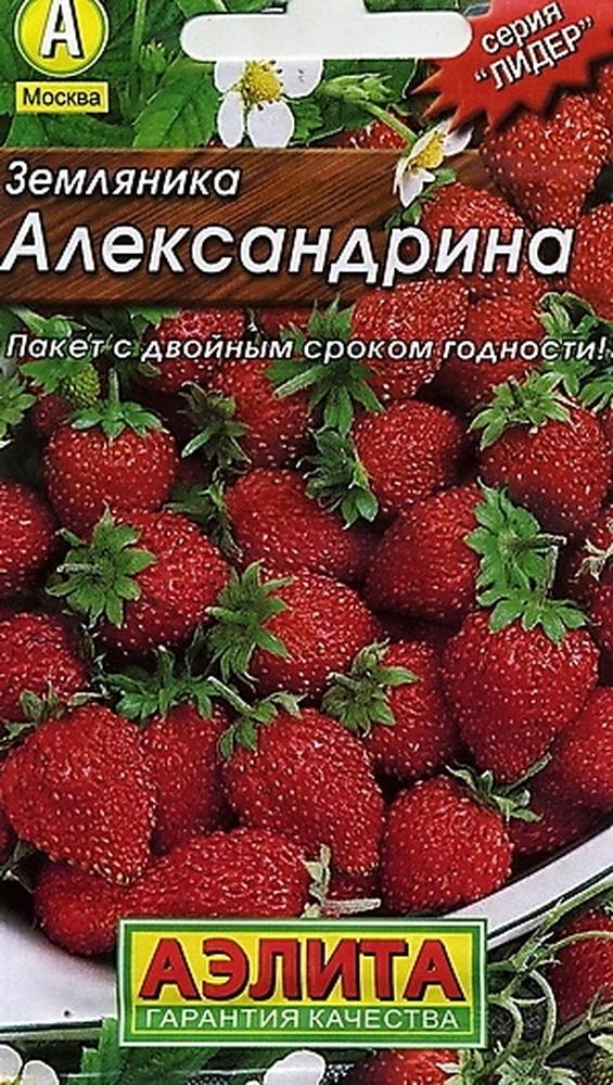 Пакет с семенами земляники Александрина