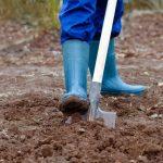 Подготовка грунта осенью