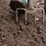Подготовка грунта весной