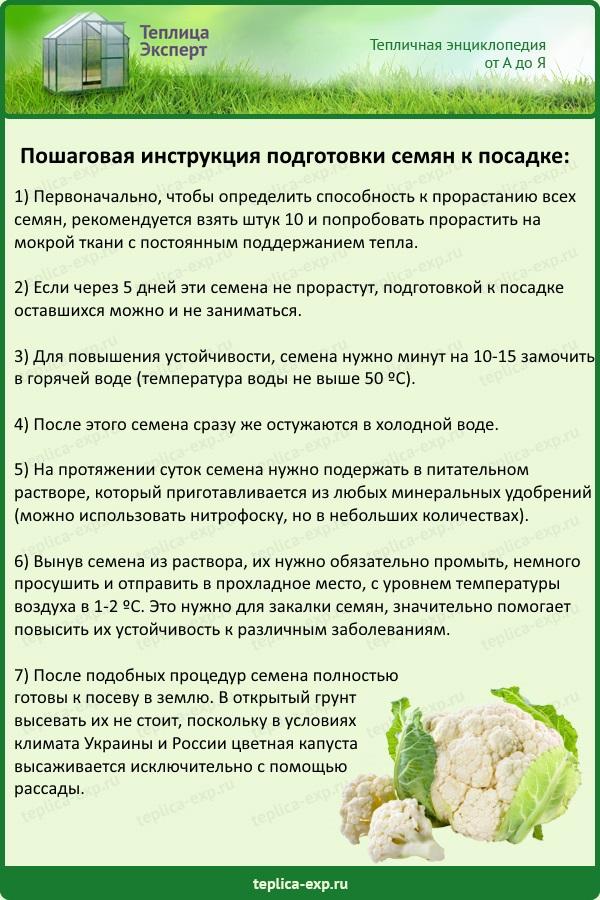 Пошаговая инструкция подготовки семян к посадке