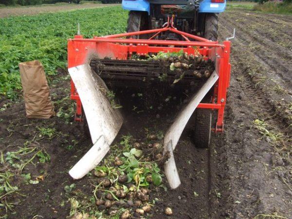 После прохода картофелекопалка должна оставлять за собой вытолкнутые наружу клубни