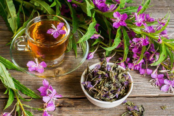 При соблюдении правил приготовления и хранения Иван-чай будет сохранять свои качества долгие годы