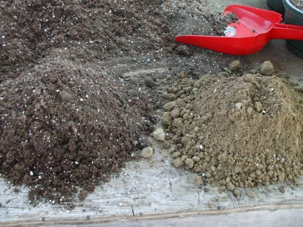 Приготовление грунта для посева