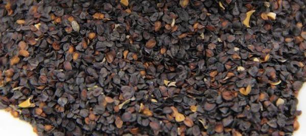 Семена гвоздики перистой