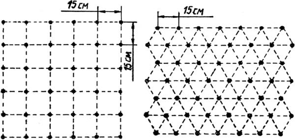 Схема квадратно-гнездовой посадки