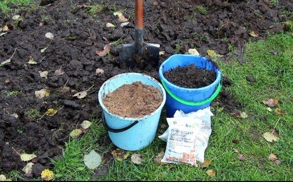 Составляющие смеси для удобрения грунта