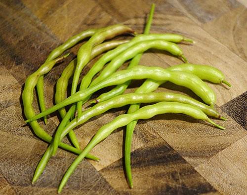 Специфичная форма плодов делает это растение уникальным