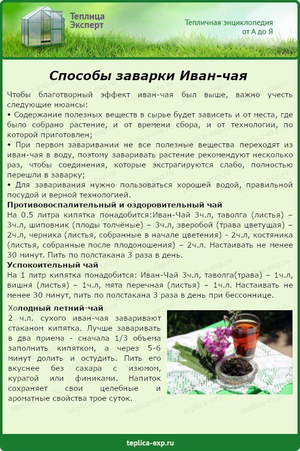 Способы заварки Иван-чая