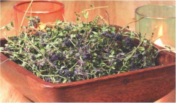 Сушка веточек чабреца для добавления в чай и приготовления отвара