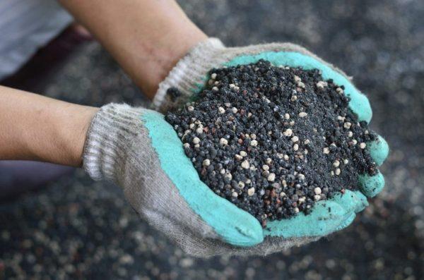 Вместе с перекопкой нужно внести в почву удобрения