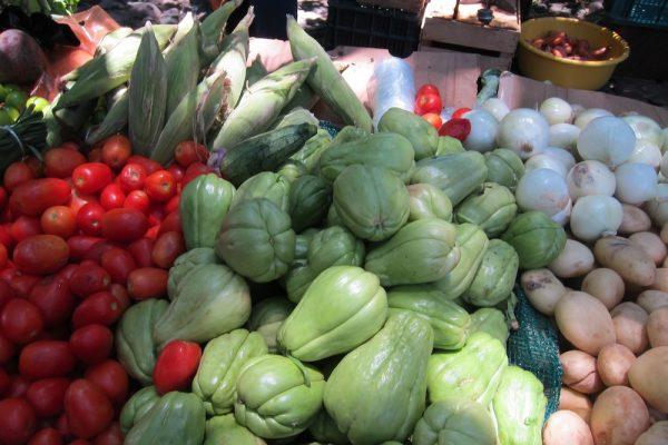 Экзотические овощи для поставки в ресторан