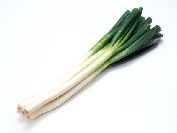 """Лук шалот имеет съедобную и очень сочную зеленую часть, а также в пищу употребляется его """"репка"""""""