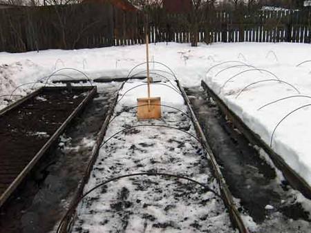 Грядка под снегом