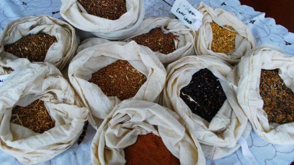 Хранение различных семян в тканевых мешочках