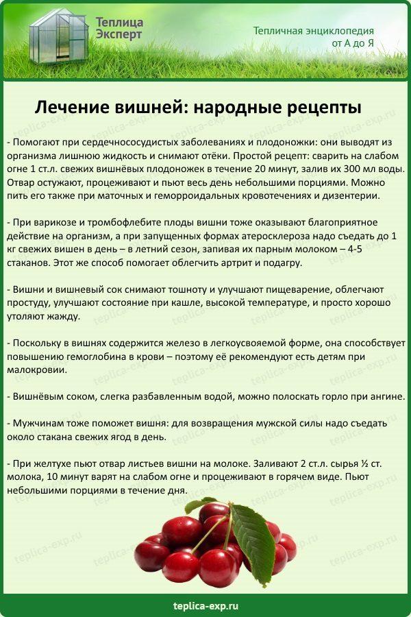 Лечение вишней при заболеваниях