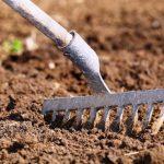 После рыхления почва становится более воздухопроницаемой