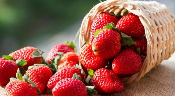 Сочные ягоды клубники