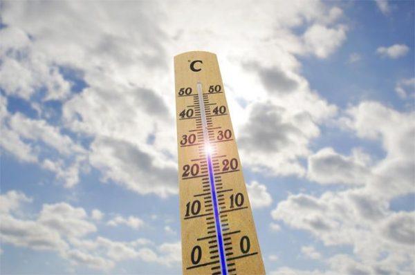 Земля должна быть прогрета до +18°С