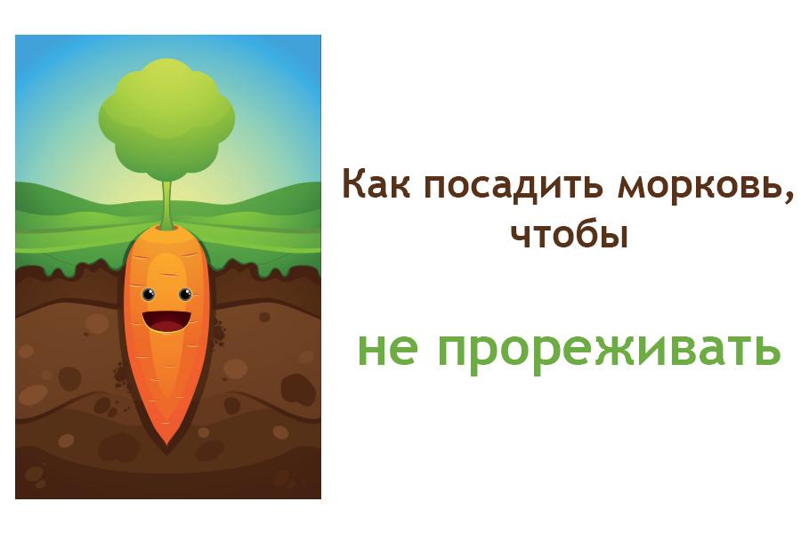 Как сажать семена моркови чтобы не прореживать