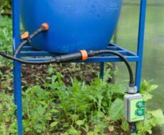 Как сделать капельный полив из бочки для теплицы
