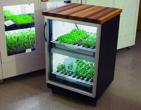 Гидропоническая ферма шкаф