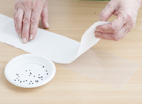 Подготовьте ленту туалетной бумаги 40 см