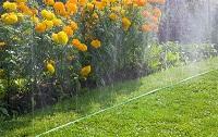 Шланги-дождеватели