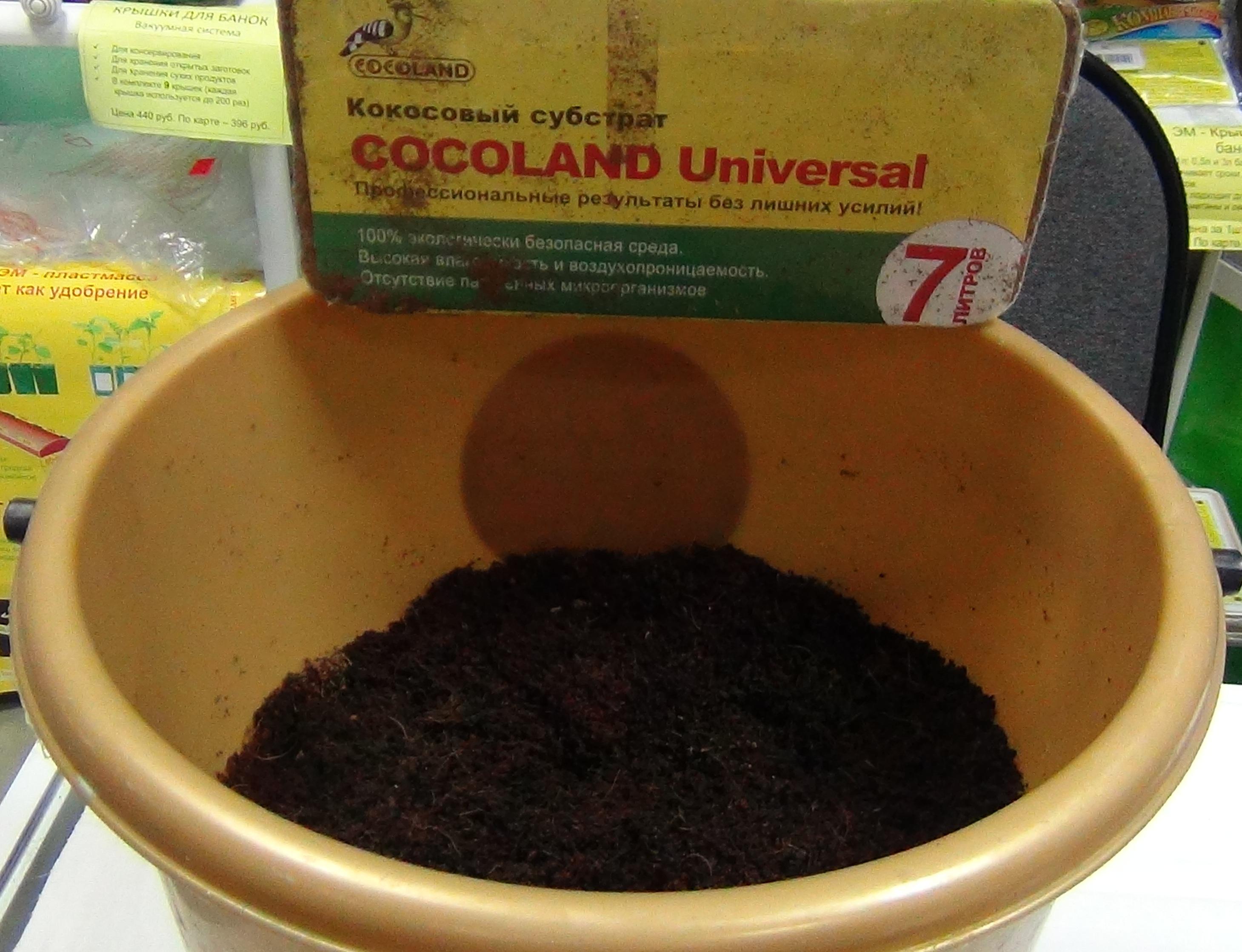 Альтарнетивный вариант - использование кокосового субстрата