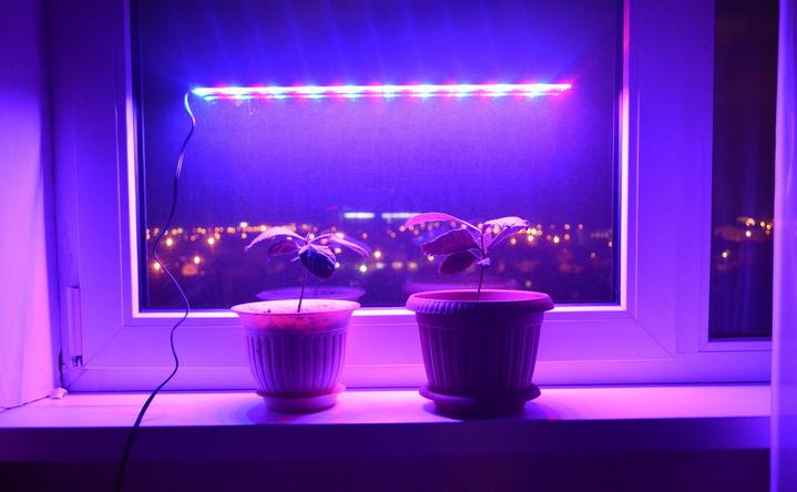 Фитосветильник для рассады и комнатных растений