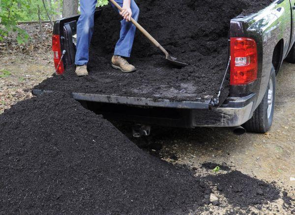 Новая почва должна быть магазинной или привезенной с другого места