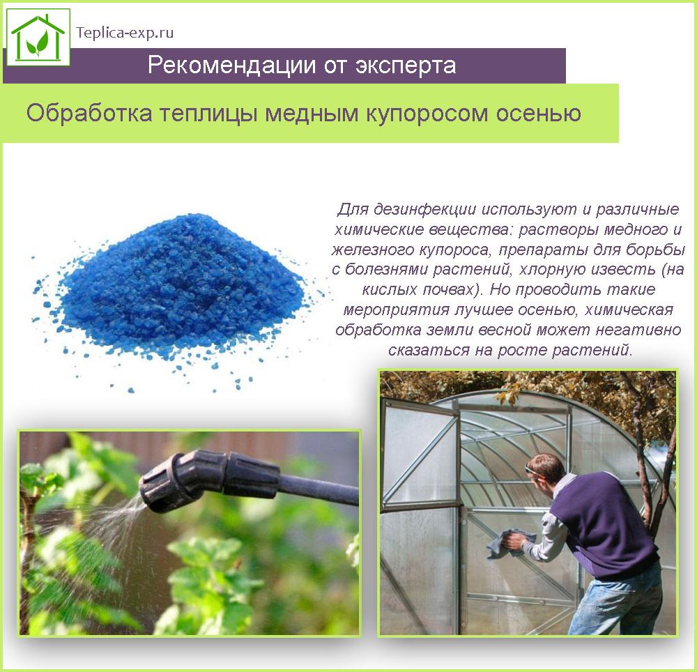 Как развести медный купорос для обработки клубники осенью