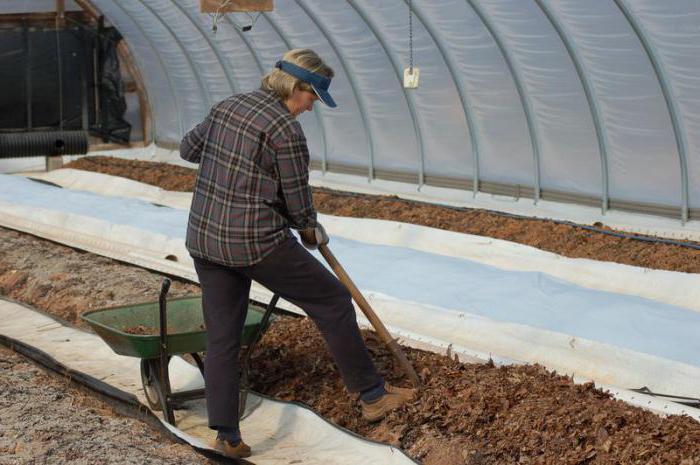 Почву нужно перекопать
