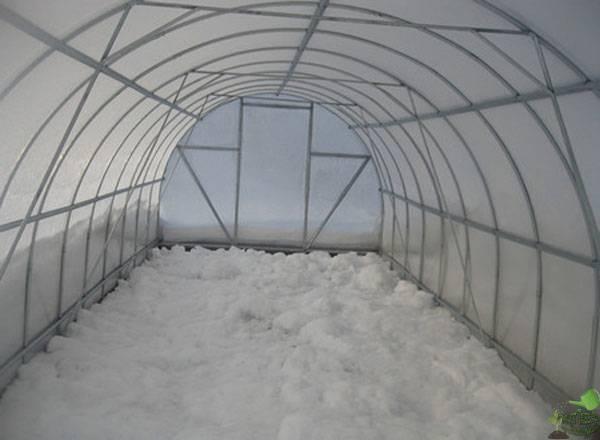 Почву в теплице нужно засыпать слоем снега