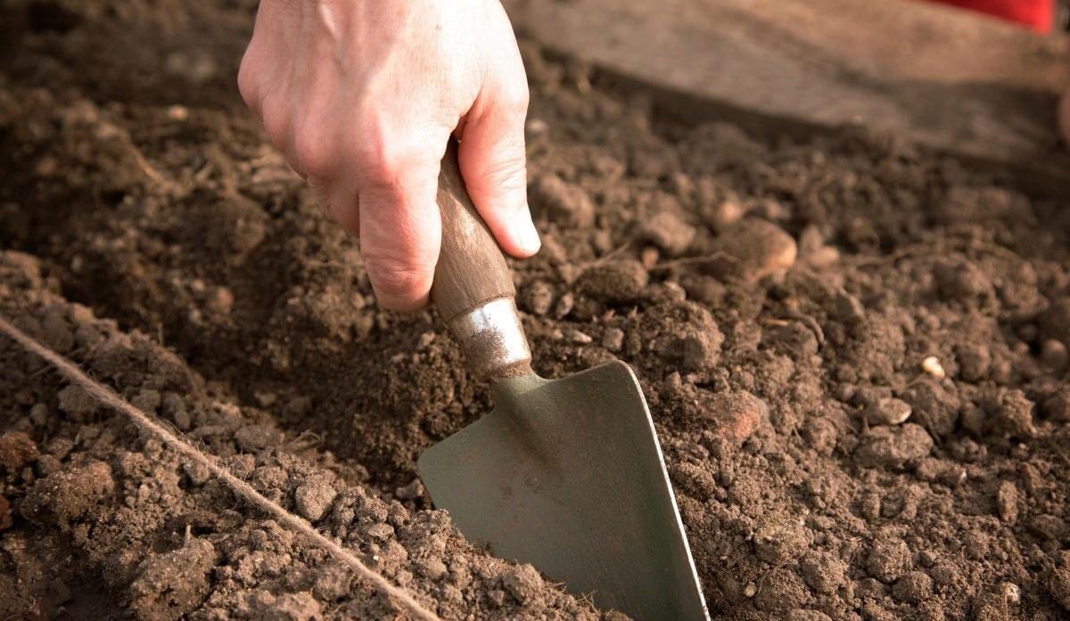 Предпосевная подготовка почвы