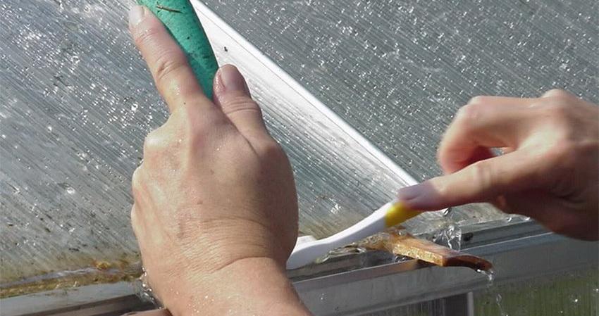 Стыки между элементами теплицы удобно мыть старой зубной щеткой