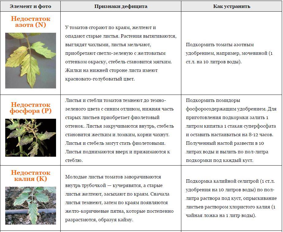Таблица недостатков элементов питания у томатов